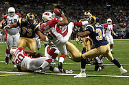 Arizona Cardinals running back Marcel Shipp (31) tumbles into the end zone for a third quarter touchdown against St. Louis at the Edward Jones Dome in St. Louis, Missouri, December 3, 2006.  The Cardinals beat the Rams 34-20.<br />