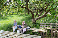 20140601 Free for editorial use image<br /> <br /> Halifax colleagues in Bournemouth are proud to give extra back to their local community by hosting their Big Lunch event on Sunday 01 June 2014.<br /> <br /> Barry and Naomi Rosenfeld lunch in the orchard during The Big Lunch at the New Leaf Allotment in Bournemouth. <br /> <br /> For more information please contact: Catherine Eastham on 020 3697 4304<br /> <br /> If you require a higher resolution image or you have any other onEdition photographic enquiries, please contact onEdition on 0845 900 2 900 or email info@onEdition.com<br /> This image is copyright the onEdition 2014©.<br /> This image has been supplied by onEdition and must be credited onEdition. The author is asserting his full Moral rights in relation to the publication of this image. Rights for onward transmission of any image or file is not granted or implied. Changing or deleting Copyright information is illegal as specified in the Copyright, Design and Patents Act 1988. If you are in any way unsure of your right to publish this image please contact onEdition on 0845 900 2 900 or email info@onEdition.com