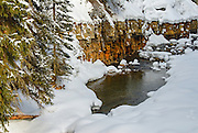 Yellowstone National Park Winter Scene with Snow