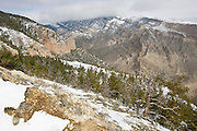 View from Cedar Mountain near Cody Wyoming