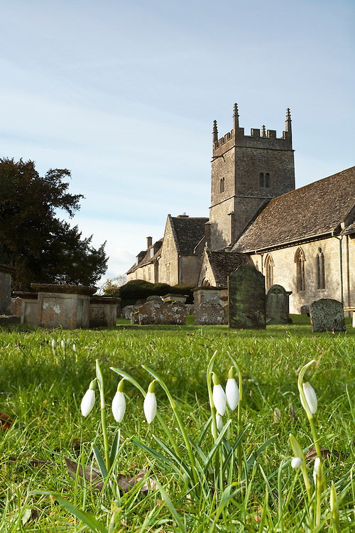 Snowdrops and All Saints Church in Somerford Keynes, Cotswolds, Gloucestershire, Uk