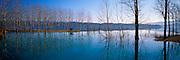 SPAIN, NORTH, CATALUNYA reflections of trees in Lake Barasona near Graus, northeast of Huesca