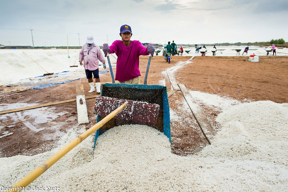 24 APRIL 2013 - SAMUT SONGKHRAM, SAMUT SONGKHRAM, THAILAND:    A worker in a salt field dumps a wheelbarrow of salt into an area where it will be bagged and weighed before being sold. The 2013 salt harvest in Thailand and Cambodia has been impacted by unseasonably heavy rains. Normally, the salt fields are prepped for in December, January and February, when they're leveled and flooded with sea water. Salt is harvested from the fields from late February through May, as the water evaporates leaving salt behind. This year rains in December and January limited access to the fields and rain again in March and April has reduced the amount of salt available in the fields. Thai salt farmers are finishing the harvest as best they can, but the harvest in neighboring Cambodia ended 6 weeks early because of rain. Salt has traditionally been harvested in tidal basins along the coast southwest of Bangkok but industrial development in the area has reduced the amount of land available for commercial salt production and now salt is mainly harvested in a small part of Samut Songkhram province.   PHOTO BY JACK KURTZ