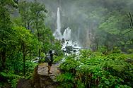 Oceania, New Zealand, Aotearoa, North Island, Kawerau, Tarawera falls