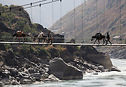 Fugong, Yunnan, China - 17 JAN 2006 - Horses carry supplies over a bridge spanning the the Nu River in Yunnan Province. A government environmental review has recommended reducing the number of dams included in a controversial hydropower proposal on the Nu River in southwestern China to limit environmental damage and decrease the number of people who would be resettled.