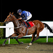 Commissar and Jim Crowley winning the 8.10 race
