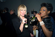 HELEN BOYLE; ARIETA MUJAY, The Elle Style Awards 2009, The Big Sky Studios, Caledonian Road. London. February 9 2009.  *** Local Caption *** -DO NOT ARCHIVE -Copyright Photograph by Dafydd Jones. 248 Clapham Rd. London SW9 0PZ. Tel 0207 820 0771. www.dafjones.com<br /> HELEN BOYLE; ARIETA MUJAY, The Elle Style Awards 2009, The Big Sky Studios, Caledonian Road. London. February 9 2009.