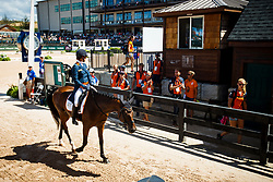 Blom Merel, NED, Rumour Has It<br /> World Equestrian Games - Tryon 2018<br /> © Hippo Foto - Sharon Vandeput<br /> 14/09/2018