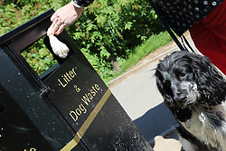 Putting dog waste into a bin.
