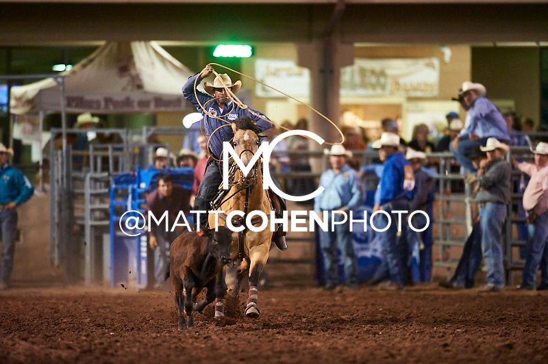 Tie-down roper Jake Hannum of Plain City, UT competes at the Pikes Peak or Bust Rodeo in Colorado Springs, CO.<br /> <br /> <br /> UNEDITED LOW-RES PREVIEW<br /> <br /> <br /> File shown may be an unedited low resolution version used as a proof only. All prints are 100% guaranteed for quality. Sizes 8x10+ come with a version for personal social media. I am currently not selling downloads for commercial/brand use.