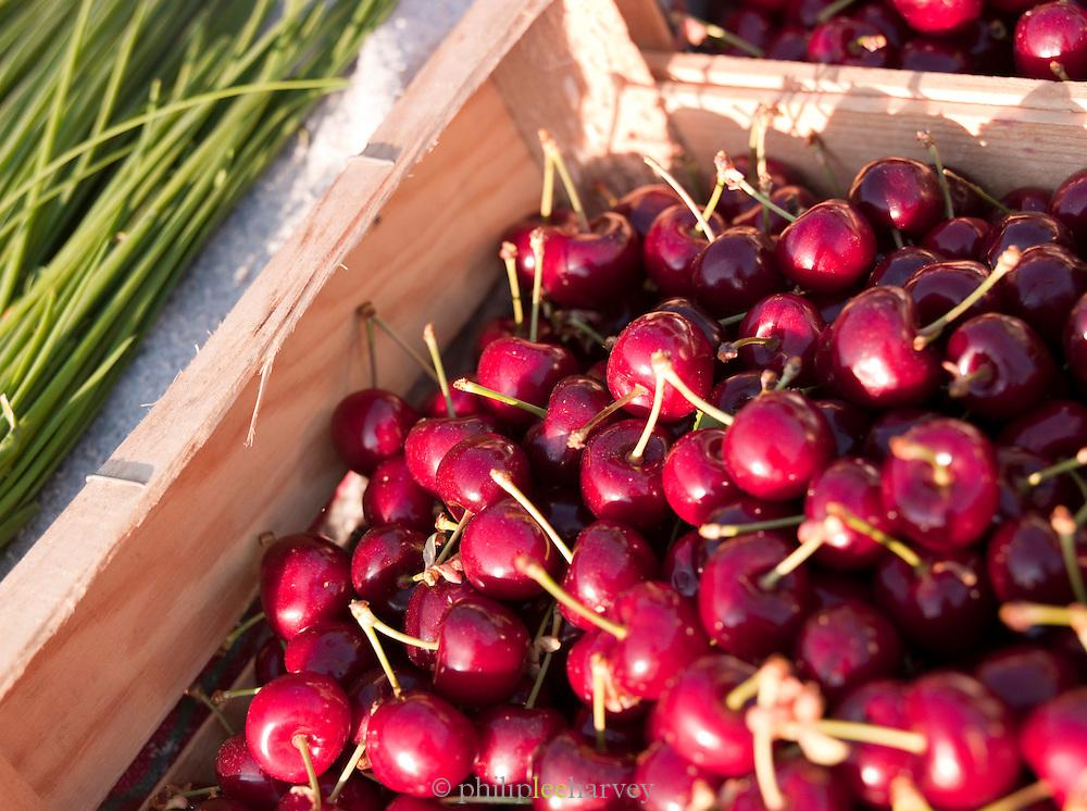 Fresh cherries in a market in Valence, Drôme region, France