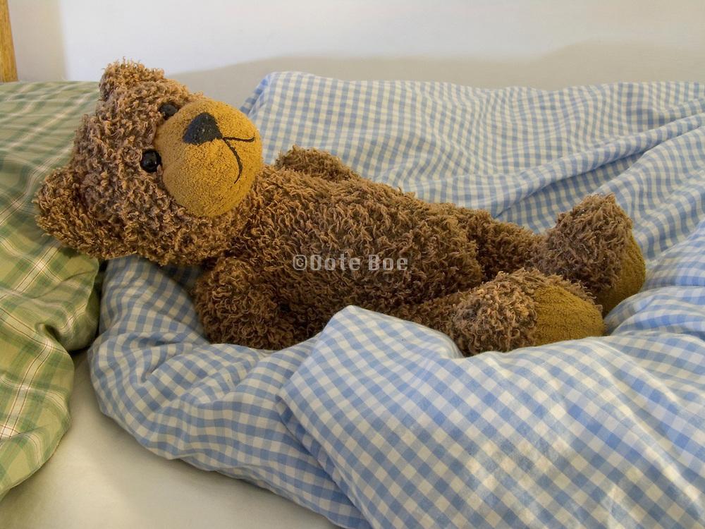 Teddy bear sleeping