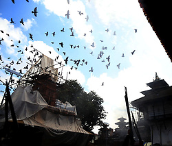 August 29, 2017 - Kathmandu, Nepal - Pigeons fly after soldiers fire guns as wooden Indradhoj pole brought for upcoming Indrajatra festival at Hanumandhoka Durbar Square, Kathmandu. The pole will be erected to mark the beginning of Indrajatra festival. (Credit Image: © Archana Shrestha/Pacific Press via ZUMA Wire)