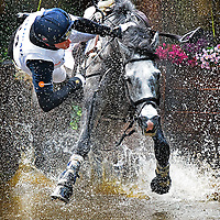 The Netherlands, Boekelo, 11-10-2014.<br /> Equestrian, Military, Cross Country.<br /> Oliver Townend from the UK can't handle his horse Shearwater Touchingwood anymore and falls down in the water.<br /> Photo : Klaas Jan van der Weij
