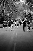 Yarra Valley Grape Run