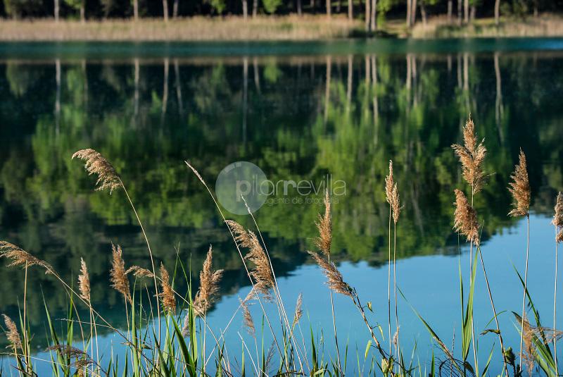 Parque Natural Lagunas de Ruidera. Albacete y Ciudad Real. ©ANTONIO REAL HURTADO / PILAR REVILLA