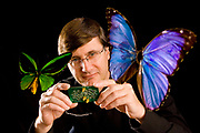 """Physics professor Dan Gauthier with a circuit board that is used in his chaos theory experiments. The butterflies represent the """"butterfly effect"""" made famous by the father of chaos theory Edward Lorenz."""