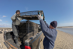 Lynne Fox & James Ward Loading Oyster Trays