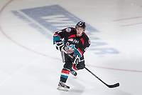 KELOWNA, CANADA, OCTOBER 16 -  Cole Martin #8 of the Kelowna Rockets skates on the ice against the Lethbridge Hurricanes on Wednesday, October 16, 2013 at Prospera Place in Kelowna, British Columbia (photo by Marissa Baecker/Getty Images)***Local Caption***