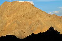 Inde - Province du Jammu Cachemire -  Ladakh - Leh - Monastère bouddhiste de Namgyal Tsemo