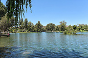 The Lake at Carbon Canyon Regional Park in Brea
