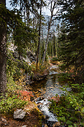 Farley Lake Creek. Hike the Alice-Toxaway Loop in Sawtooth Wilderness, Blaine County, Idaho, USA. On October 6-7, 2020, starting from Tin Cup Trailhead, I hiked a clockwise loop 20 miles with an overnight stay at idyllic Twin Lakes. The first day to Twin Lakes was a moderate 7.4 miles with 2090 feet gain. The second day returned via Toxaway Lake and Farley Lake for 12.5 miles with 1260 feet up and 2940 feet down. For the most dramatic scenic build-up, I recommend backpacking 3 days counterclockwise staying at Toxaway Lake then Twin Lakes. (On a 2007 backpacking trip in August, we enjoyed staying 2 nights at Alice Lake and day-hiked to Toxaway.) The Sawtooth Range (part of the Rocky Mountains) are made of pink granite of the 50 million year old Sawtooth batholith.