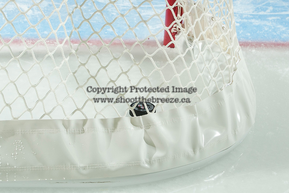 KELOWNA, CANADA - MARCH 26: The puck sits in the net after a goal by Tomas Soustal #15 of Kelowna Rockets against the Kamloops Blazers on March 26, 2016 at Prospera Place in Kelowna, British Columbia, Canada.  (Photo by Marissa Baecker/Shoot the Breeze)  *** Local Caption *** Tomas Soustal;