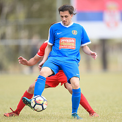BRISBANE, AUSTRALIA - SEPTEMBER 30:  during the Karadjordjev Kup Semi Final match between Beograd Amateri and St George Willawong FC on September 30, 2018 in Brisbane, Australia. (Photo by Patrick Kearney)