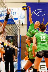 20141217 NED: Challenge Cup, Coolen Alterno - VDK Gent: Apeldoorn<br />Linda Te Molder, Coolen Alterno<br />©2014-FotoHoogendoorn.nl / Pim Waslander