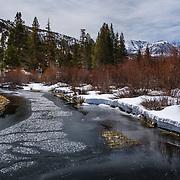 Rock Creek And Mt. Morgan - Eastern Sierra