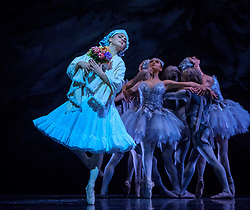 """A scene from the SCOTTISH BALLET production of """"The Fairy's Kiss"""" (Le Baiser de la Fée) at the Theatre Royal, Glasgow.<br /> <br /> Scottish-born choreographer Kenneth MacMillan created The Fairy's Kiss in 1960 for The Royal Ballet, and Scottish Ballet's revival marks the 25th anniversary of his death and its first presentation since 1986.<br /> <br /> Inspired by Hans Christian Andersen's fairy tale The Ice Maiden, The Fairy's Kiss tells the story of a boy cursed with a kiss, destined for immortality. Scottish Ballet's production features new sets and costumes designed by Gary Harris, who worked closely with MacMillan.<br /> <br /> The Fairy's Kiss will be performed alongside Christopher Hampson's The Rite of Spring in Glasgow (6-7 October), Edinburgh (11-13 October), Aberdeen (24-25 October), and Inverness (3-4 November). Scottish Ballet will also perform The Fairy's Kiss at The Royal Opera House, London on 18 and 19 October. This marks the first time that the Company will have performed at this iconic venue.<br /> <br /> <br /> (c) Andrew Wilson 