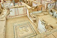 Turquie, province d'Izmir, ville de Selcuk, site archéologique d'Ephese, les maisons en terrasse // Turkey, Izmir province, Selcuk city, archaeological site of Ephesus, Terrace house
