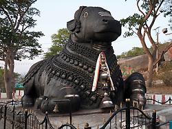 Bull ( Nandi ) at Mysore.