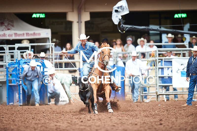 Tie-down roper Trevor Thiel of Greely, CO competes at the Pikes Peak or Bust Rodeo in Colorado Springs, CO.<br /> <br /> <br /> UNEDITED LOW-RES PREVIEW<br /> <br /> <br /> File shown may be an unedited low resolution version used as a proof only. All prints are 100% guaranteed for quality. Sizes 8x10+ come with a version for personal social media. I am currently not selling downloads for commercial/brand use.