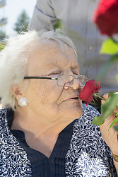 Son with mother smelling rose flower at park, Bavaria, Germany
