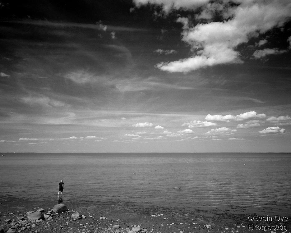 Wading in the Gulf of Finland.<br /> Photo: Svein Ove Ekornesvåg