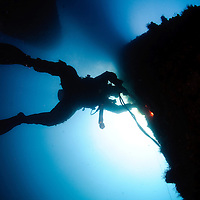 העולם התת ימי