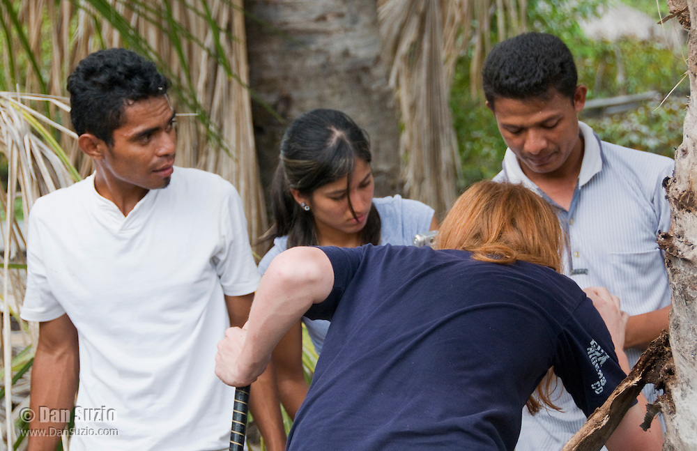 Students Zito Afranio (left), Marianna Tucci, Benny Carvalho, and Scott Heacox (back to camera) search for lizards in the Liquica district of Timor-Leste (East Timor). They are participating in an ongoing survey of Timorese reptiles and amphibians.