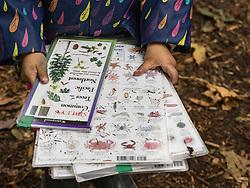 United States, Washington, Burien, Tiny Trees Preschool at Seahurst Park