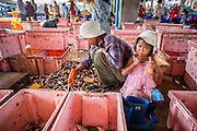 30 OCTOBER 2012 - PATTANI, PATTANI, THAILAND:  A Cambodian worker sorts and grades fish while her daughter sits nearby in the fishing port of Pattani, province of Pattani, Thailand. Thailand's fishing industry relies on immigrant workers, mostly from Myanmar but also Laos and Cambodia. There have been allegations of worker abuse, including charges that workers are held in slave labor like conditions.  There are hundreds of thousands of immigrant workers in the Thai fishing industry. Most are from Myanmar (Burma) but there are also Cambodian and Laotian workers in the industry.    PHOTO BY JACK KURTZ