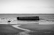 A woman rides a horse past the remains of Mulberry Harbour in Arromanches, Normandy, France. In the days after D-Day, the Allies built a large artificial port, the remains of which are still visible.