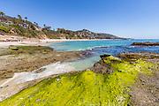 Bluff Top Homes Overlook Laguna Beach Coastline