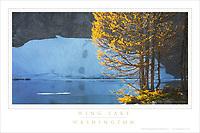 Wing Lake North Cascades Washington Poster