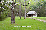 66745-04309 Carter Shields Cabin in spring, Cades Cove area, Great Smoky Mountains National Park, TN