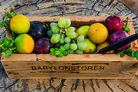 Fresh fruit, Babylonstoren, Cape Winelands, near Cape Town, South Africa.