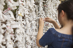 August 4, 2017 - Young woman wearing blue dress tying omikuji fortune telling paper at Shinto Sakurai Shrine, Fukuoka, Japan. (Credit Image: © Mint Images via ZUMA Wire)