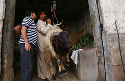 August 29, 2017 - Cairo, Cairo, Egypt - Egyptians gather at a live stock market, ahead of Eid al-Adha, in Cairo, Egypt, on August  29, 2017. Eid al-Adha (the Festival of Sacrifice) is celebrated throughout the Muslim world as a commemoration of Abraham's willingness to sacrifice his son for God, and cows, camels, goats and sheep are traditionally slaughtered on the holiest day  (Credit Image: © Amr Sayed/APA Images via ZUMA Wire)