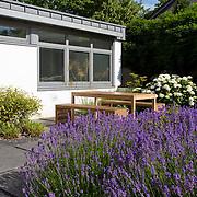 Modern Garden 809