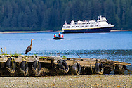 Chichagof Island near Port Althorp, <br /> Alaska, USA
