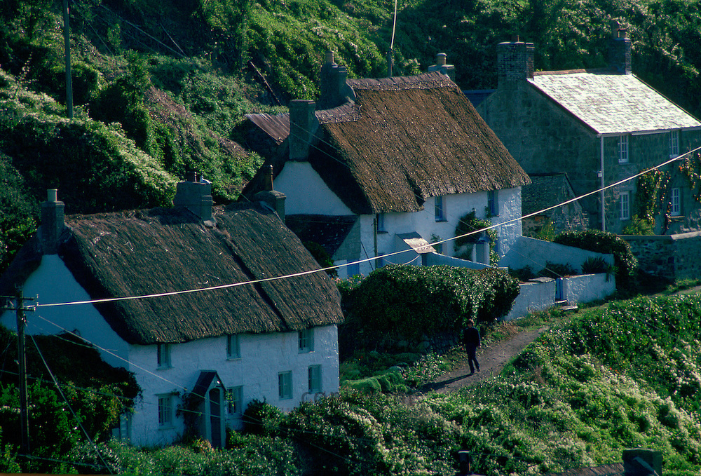 Cottages in the quaint village of Cadgwith in Cornwall, England